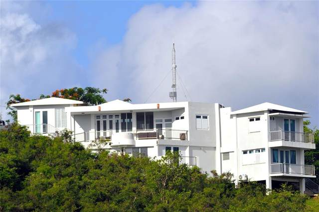 212 Villa Borinquen, VIEQUES, PR 00765 (MLS #PR9093889) :: Everlane Realty