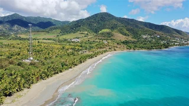 Carretera Estatal nu Km 116.3 Beach, PATILLAS, PR 00723 (MLS #PR9093930) :: Realty Executives