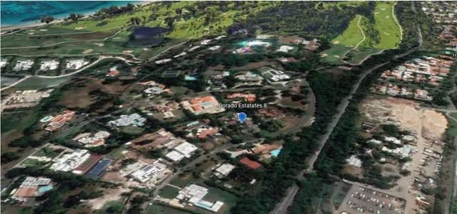 Dorado Beach Estates Dorado Beach Estates, DORADO, PR 00646 (MLS #PR9093968) :: Zarghami Group