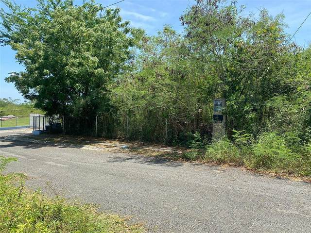 B-3 Urb. Altos De SamãƒâN, Cabo Rojo, CABO ROJO, PR 00623 (MLS #PR9093984) :: Premium Properties Real Estate Services