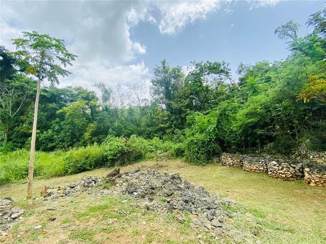 6A Sector Monserrate, VEGA BAJA, PR 00693 (MLS #PR9093990) :: Delgado Home Team at Keller Williams