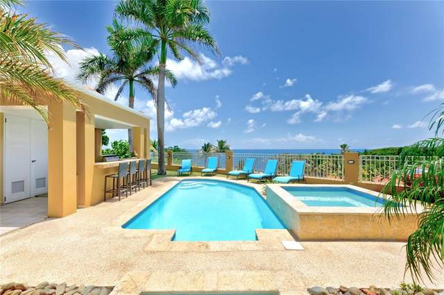 53 Shell Castle, HUMACAO, PR 00791 (MLS #PR9093991) :: Everlane Realty