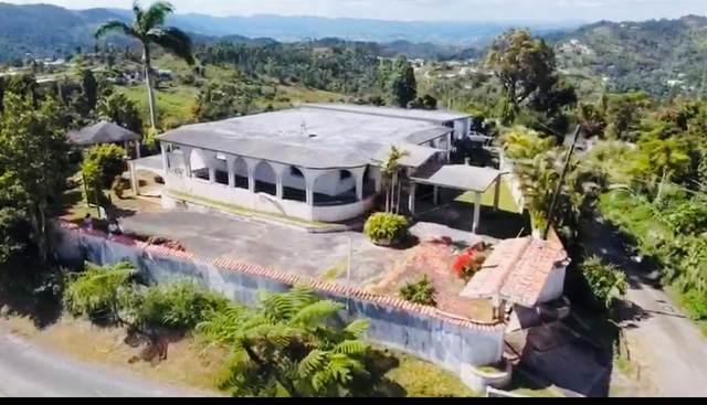 Barrio Guavate Pr 763 Km 7.0, CAYEY, PR 00736 (MLS #PR9094020) :: Zarghami Group