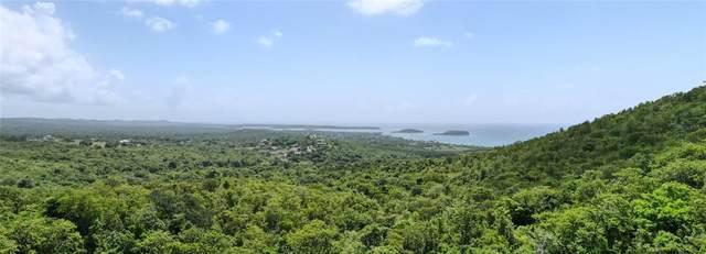 4844 Puerto Real, VIEQUES, PR 00765 (MLS #PR9094070) :: Everlane Realty