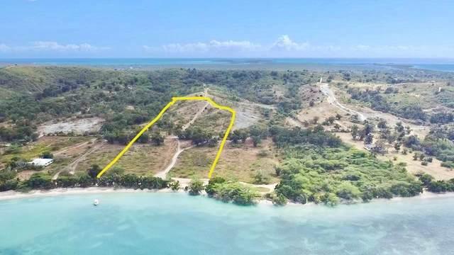 Boqueron Los Pozos Carr. 3301 Km 1.6 Int Beach, CABO ROJO, PR 00623 (MLS #PR9094182) :: Everlane Realty