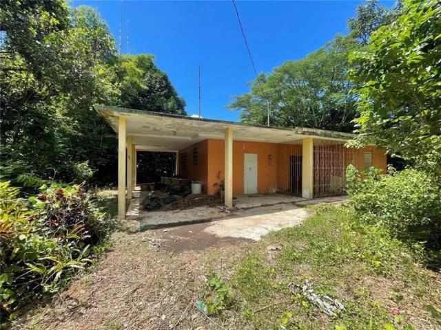 611 Road Km 0.1 Vivi Abajo Ward, UTUADO, PR 00641 (MLS #PR9094246) :: SunCoast Home Experts
