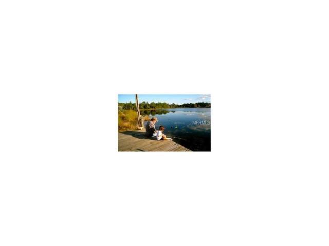 0 Wilderness Trail, Crescent City, FL 32112 (MLS #R4706481) :: The Duncan Duo Team