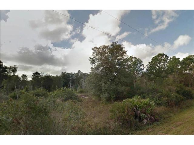 2707 53RD Street SW, Lehigh Acres, FL 33976 (MLS #R4706817) :: Premium Properties Real Estate Services