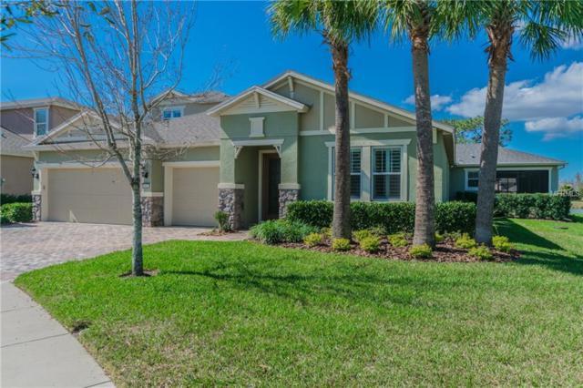 19430 Butterwood Lane, Lutz, FL 33558 (MLS #R4707414) :: The Signature Homes of Campbell-Plummer & Merritt