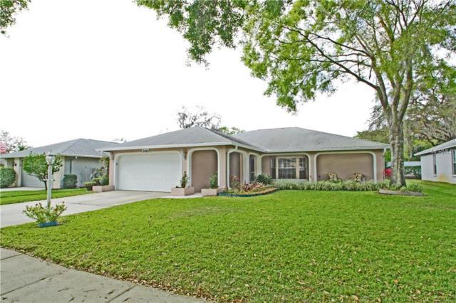 3969 Tarpon Pointe Circle, Palm Harbor, FL 34684 (MLS #R4900029) :: Team Pepka