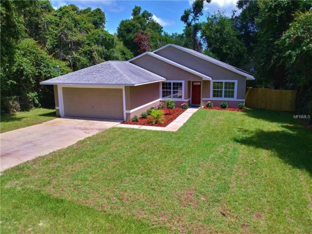 4215 Elm Street, Lady Lake, FL 32159 (MLS #R4900224) :: The Lockhart Team