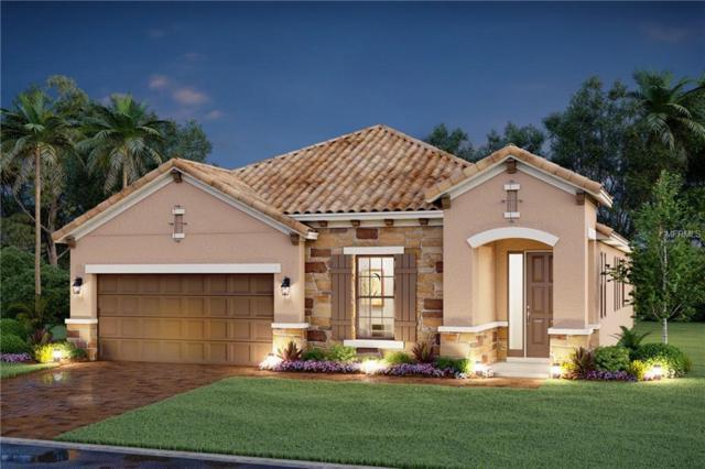 6206 25TH Street E, Ellenton, FL 34222 (MLS #R4900355) :: Medway Realty
