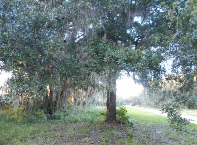 Address Not Published, Oak Hill, FL 32759 (MLS #R4900412) :: The Duncan Duo Team