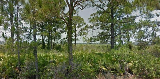 Address Not Published, Lake Placid, FL 33852 (MLS #R4900603) :: The Duncan Duo Team