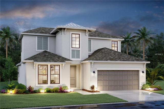 8509 Cache Drive, Sarasota, FL 34240 (MLS #R4900658) :: RealTeam Realty