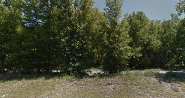 Address Not Published, Keystone Heights, FL 32656 (MLS #R4900661) :: The Duncan Duo Team