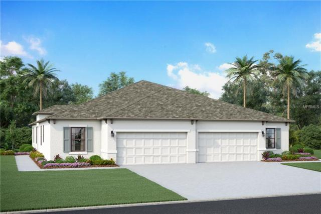 8504 Cache Drive, Sarasota, FL 34240 (MLS #R4900680) :: RealTeam Realty