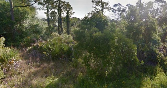 Address Not Published, Punta Gorda, FL 33955 (MLS #R4900723) :: KELLER WILLIAMS CLASSIC VI