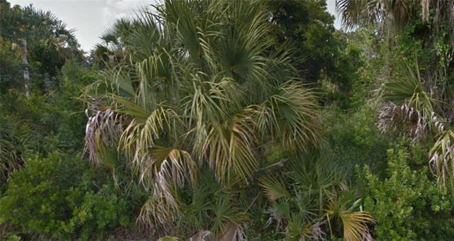 Address Not Published, Punta Gorda, FL 33955 (MLS #R4900724) :: Medway Realty