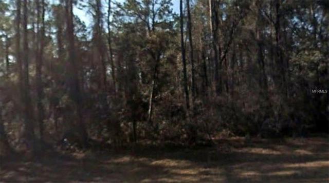 Address Not Published, Citrus Springs, FL 34434 (MLS #R4900784) :: Burwell Real Estate