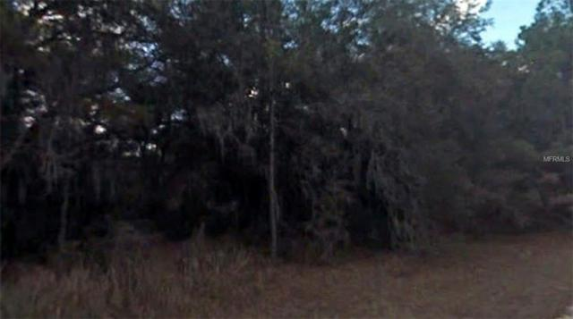 Address Not Published, Dunnellon, FL 34434 (MLS #R4900785) :: Cartwright Realty