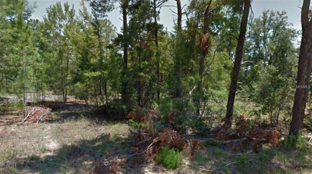 Address Not Published, Homosassa, FL 34446 (MLS #R4900807) :: Mark and Joni Coulter   Better Homes and Gardens