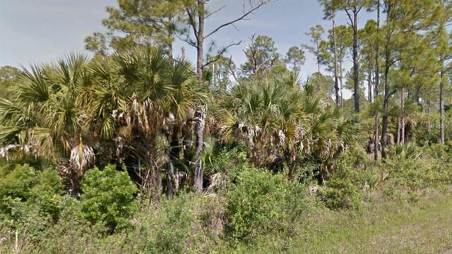Address Not Published, North Port, FL 34288 (MLS #R4900838) :: Team Touchstone