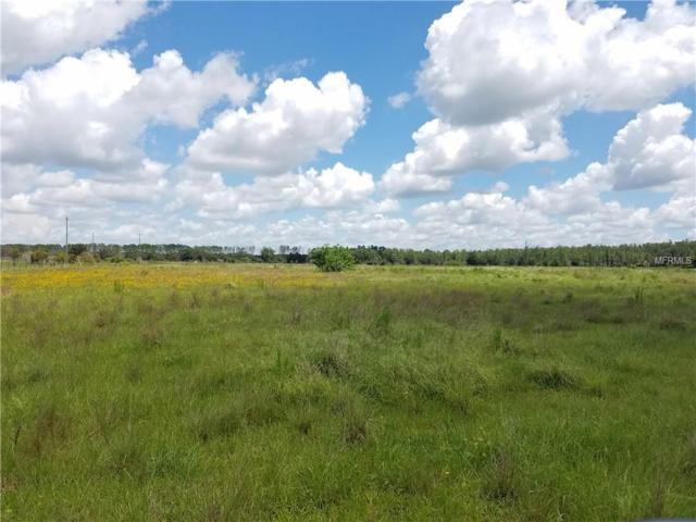 Address Not Published, Kenansville, FL 34739 (MLS #R4900893) :: Homepride Realty Services