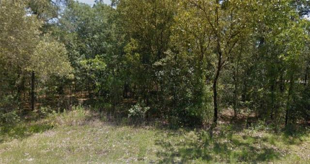 SW 80TH Street, Dunnellon, FL 34432 (MLS #R4900932) :: Mark and Joni Coulter | Better Homes and Gardens