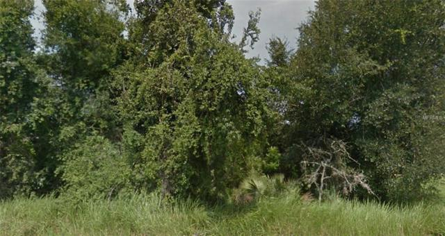 Spruce Run, Ocala, FL 34472 (MLS #R4900938) :: Homepride Realty Services