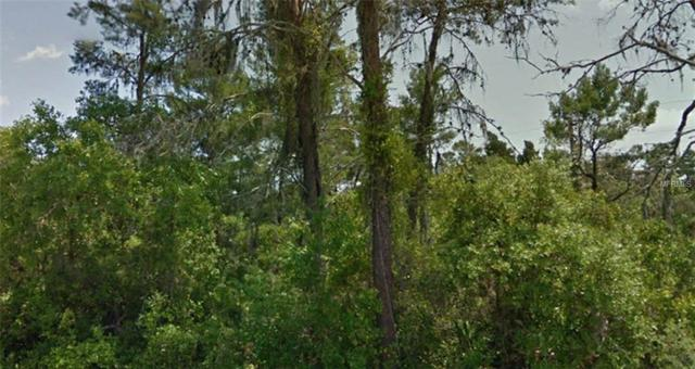 Wildrose Avenue, New Port Richey, FL 34654 (MLS #R4900944) :: GO Realty