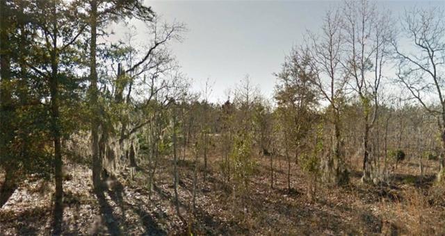 Hudson Trail, Interlachen, FL 32148 (MLS #R4900968) :: Griffin Group