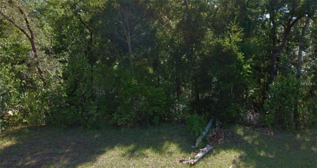 8855 N Golfview Drive, Citrus Springs, FL 34434 (MLS #R4901006) :: Delgado Home Team at Keller Williams