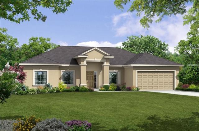 2891 Creeks Crossing Boulevard, Lakeland, FL 33810 (MLS #R4901182) :: Welcome Home Florida Team