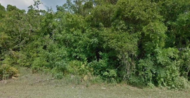 Chimney Swift Road, Weeki Wachee, FL 34614 (MLS #R4901282) :: Homepride Realty Services