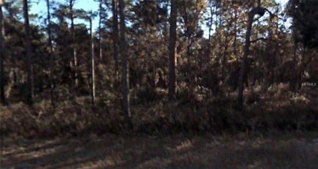 Georgia Road, Altoona, FL 32702 (MLS #R4901296) :: Homepride Realty Services