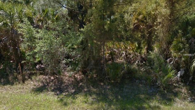13117 Rankin Avenue, Port Charlotte, FL 33953 (MLS #R4901343) :: Homepride Realty Services