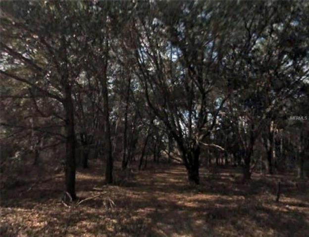 Locust Run Drive, Ocala, FL 34472 (MLS #R4901394) :: The Duncan Duo Team