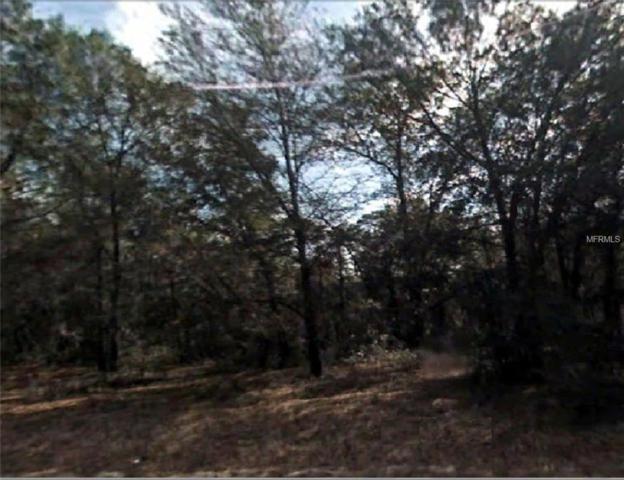 Locust Run Circle, Ocala, FL 34472 (MLS #R4901395) :: The Duncan Duo Team