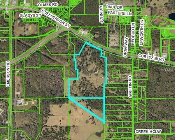 Address Not Published, Brooksville, FL 34601 (MLS #R4901495) :: Griffin Group