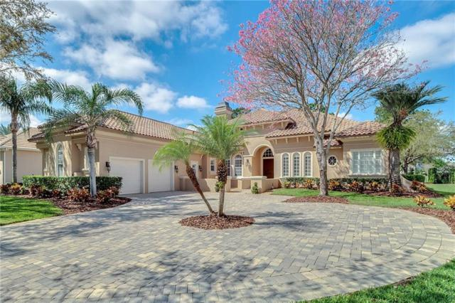 8234 Stonemason Court, Windermere, FL 34786 (MLS #R4901505) :: Bustamante Real Estate