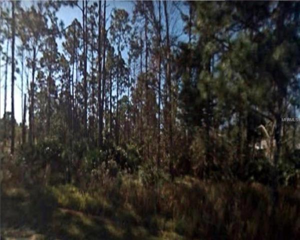 5313 April Way, Sebring, FL 33875 (MLS #R4901530) :: Team Bohannon Keller Williams, Tampa Properties