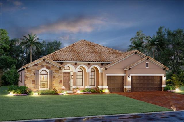 1819 151ST Terrace E, Parrish, FL 34219 (MLS #R4901575) :: The Light Team
