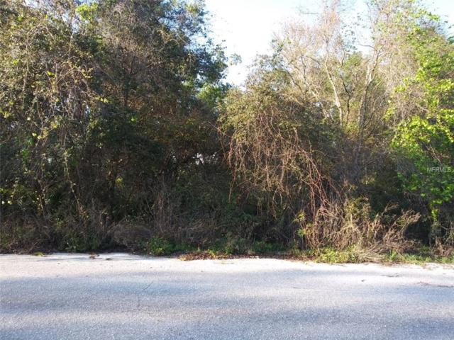 Fisher Pass Fisher Pass, Ocklawaha, FL 32179 (MLS #R4901591) :: The Duncan Duo Team