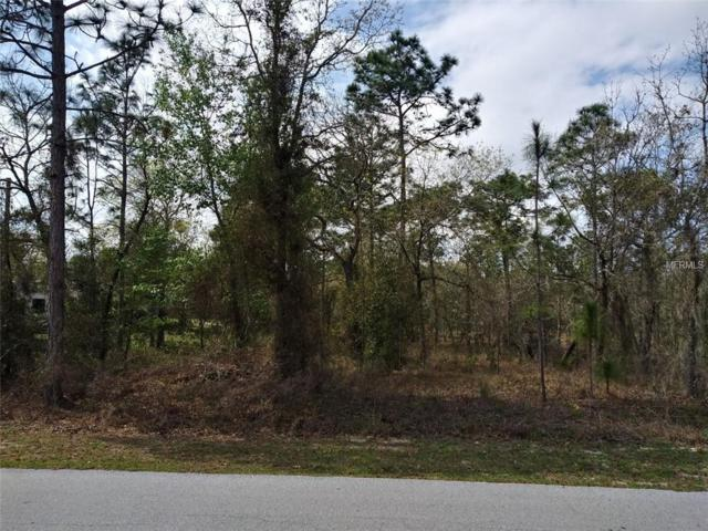 Sw Bonable Drive, Dunnellon, FL 34431 (MLS #R4901593) :: The Duncan Duo Team