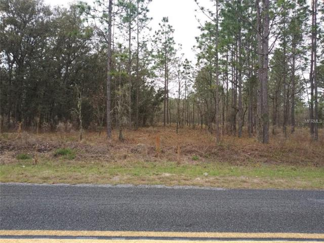 Nw Ridgewood Road, Dunnellon, FL 34431 (MLS #R4901594) :: The Duncan Duo Team