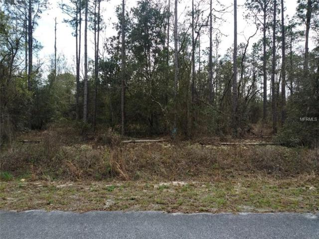 Sw White Sands, Dunnellon, FL 34431 (MLS #R4901595) :: The Duncan Duo Team