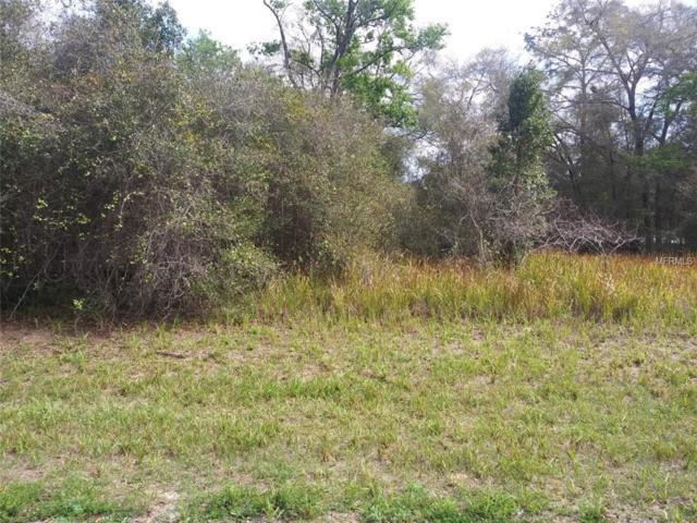 11193 N Adler Drive, Citrus Springs, FL 34434 (MLS #R4901598) :: The Duncan Duo Team