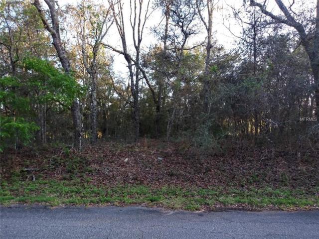 Fisher Lane, Ocklawaha, FL 32179 (MLS #R4901601) :: Team Bohannon Keller Williams, Tampa Properties