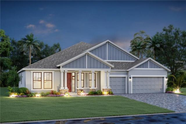 1910 151ST Terrace E, Parrish, FL 34219 (MLS #R4901690) :: Team Bohannon Keller Williams, Tampa Properties